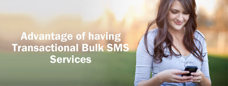Transactional Bulk SMS Services using Bulksmsmantra